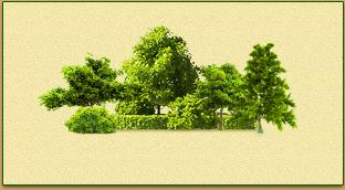 Подбор зеленых насаждений
