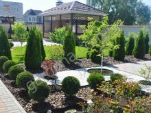 Геометрический сад. Туи колоновидные и шаровидные.
