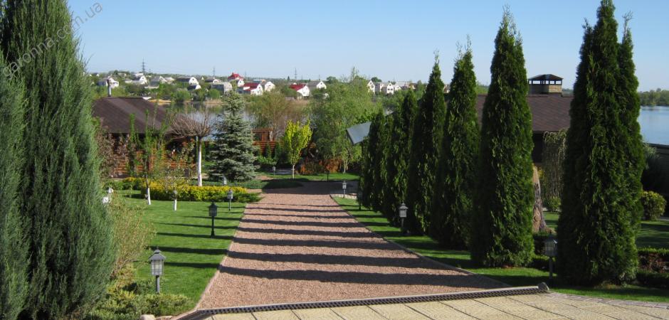 Примеры выполнения озеленения